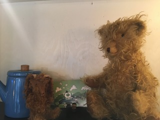 BB7A5AB3-3A8B-4692-AA37-130FB19F8528.jpeg